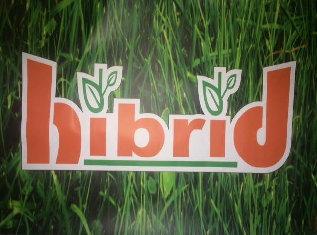 Hibrid Romania